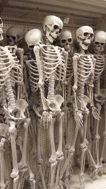 Full Size Skeletons are $49.99 this year