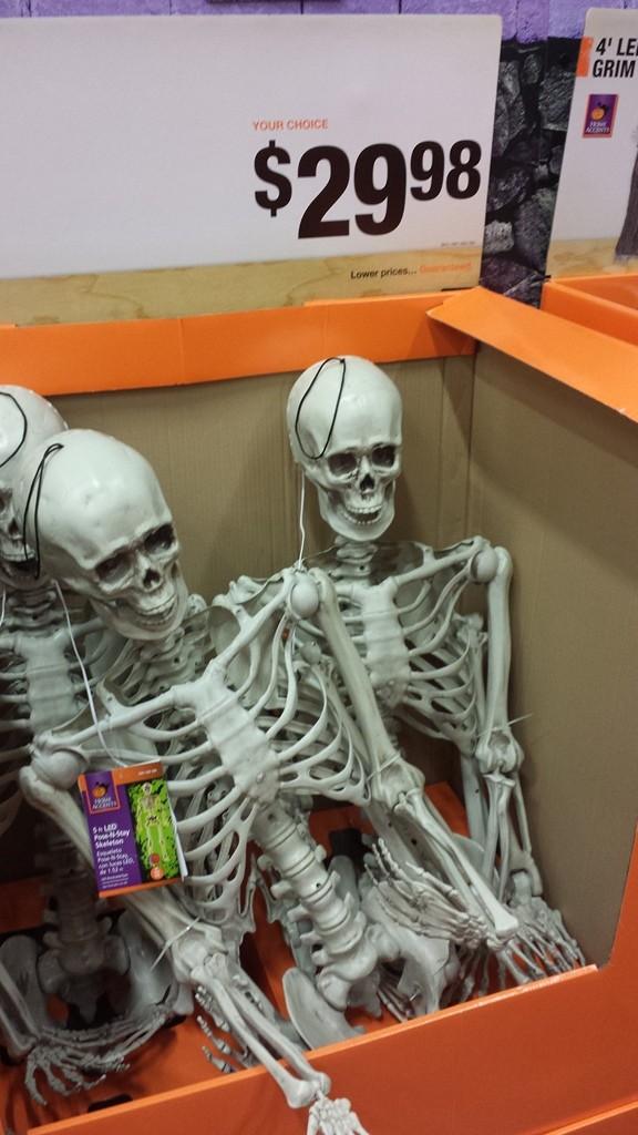 Cheapest Skeletons around!