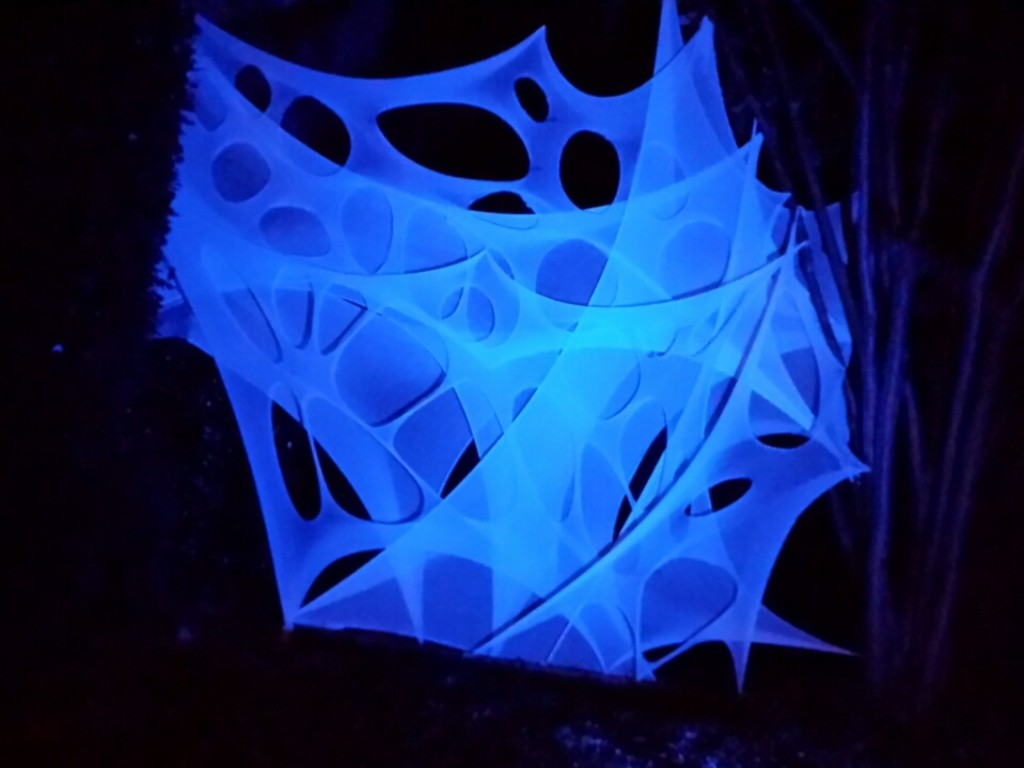 Webbing at night, lit by a blue LED floodlight